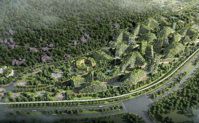 Leśne miasto będzie usuwać zanieczyszczenia powietrza