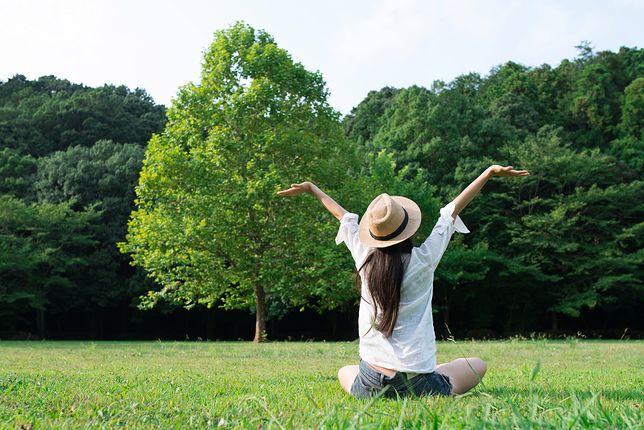 We współczesnych formach spędzania wolnego czasu coraz mniejszy udział ma rekreacja na świeżym powietrzu