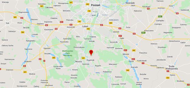 Tragiczny wypadek w Wielkopolsce. Nie żyje kobieta