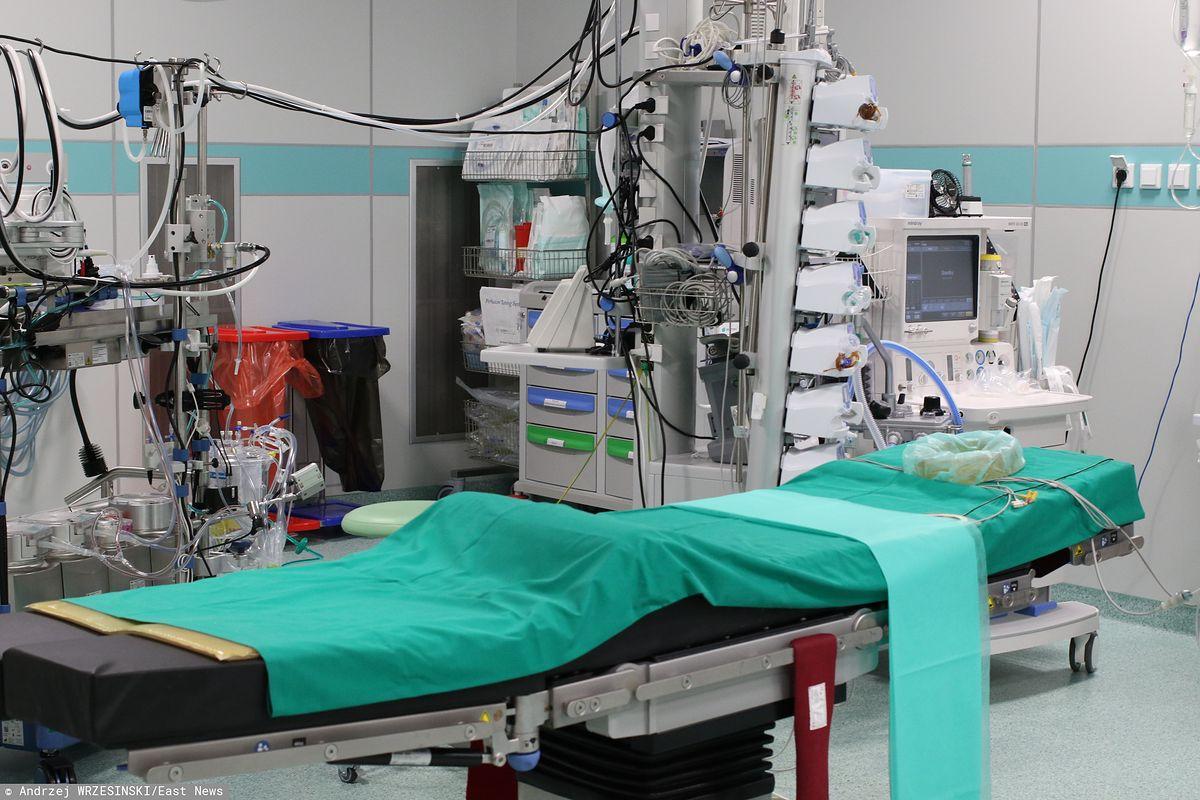 Ekspert neurochirurgii twierdzi, że pierwszy przeszczep ludzkiej głowy będzie możliwy do 2030 roku