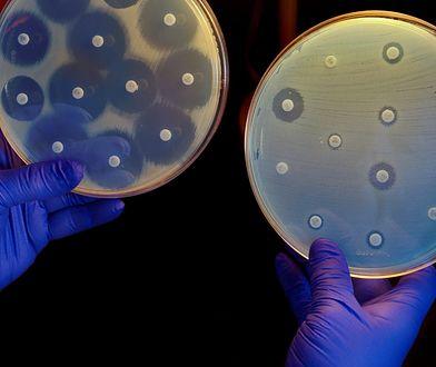 Halicyna może pokonać wiele nieuleczalnych infekcji