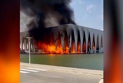 Pożar egipskiego centrum filmowego. Jutro miał być tam Zbigniew Zamachowski