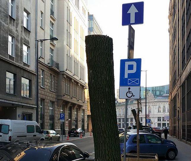 Wycięto drzewa przy ulicy Jasnej w Warszawie