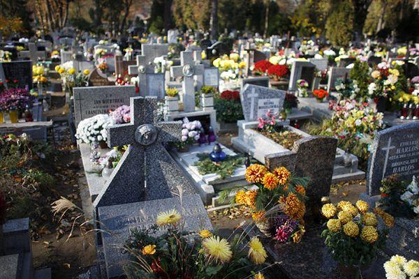 Martwy noworodek na cmentarzu. Obok znaleziono nadpalone ubrania