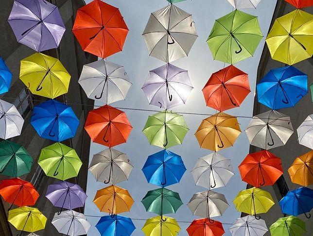 Kolorowe parasolki pojawiły się w śródmieściu, będą tam do jesieni