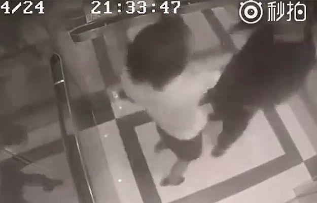 Dziewczyna kickboksera pobiła mężczyznę molestującego ją w windzie
