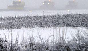 Synoptycy ostrzegają: nawet -18 stopni i gęsta mgła