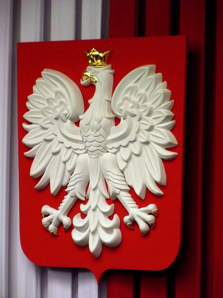 Godło Polski do poprawki. Czy możemy się spodziewać zmian w symbolach narodowych?