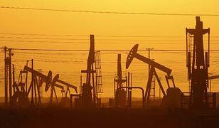 Polak był pionierem wydobywania ropy naftowej z morza