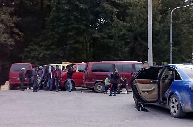Grzybiarze z Rumunii na jednym z parkingów niedaleko Kielc. Nasi grzybiarze nazywają ich mafią.