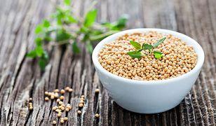 Gorczyca jest podstawowym składnikiem musztardy