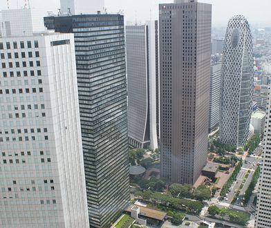 Tokio to największa metropolia świata