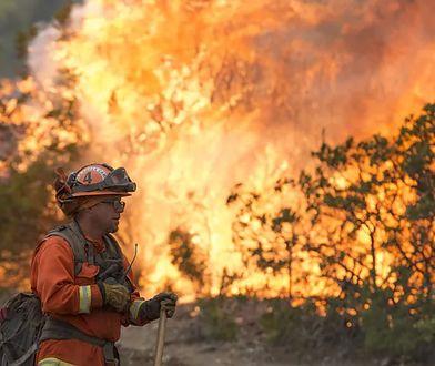USA. Pożary w Kalifornii. Dziesiątki tysięcy mieszkańców ewakuowanych