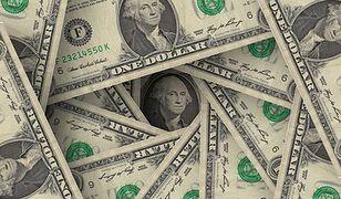 Dolar notuje największy wzrost wartości od 20 lat