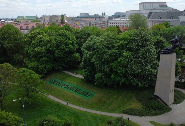 Warszawa. Napis z białych begonii posadzony został w Dniu Polskiej Niezapominajki. To w hołdzie ofiarom COVID-19