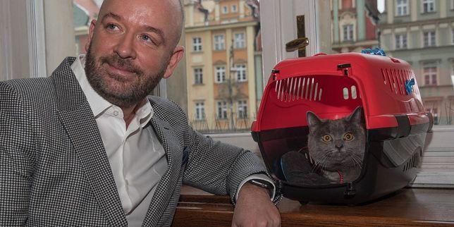 Kot Wrocek mieszka w magistracie od roku. To kolejny pupil, który znalazł dom we wrocławskim urzędzie miasta.