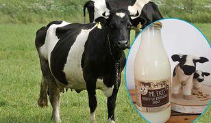 Mleko w zwrotnej, szklanej butelce wraca do łask. Wystarczy zapłacić kaucję