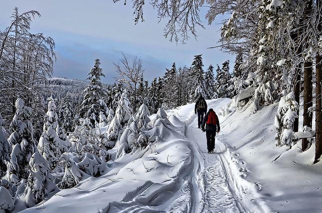 Pogoda długoterminowa na zimę 2021