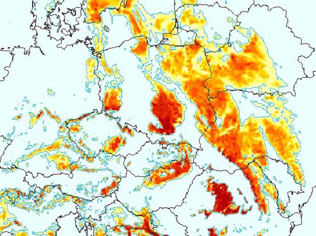 Od kilku dni nad Polską dominują gęste mgły. Oto prognozowana mapa zamgleń na poranek Święta Niepodległości