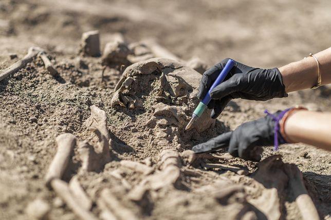 Groby pochodzą sprzed 4 tys. lat (zdjęcie ilustracyjne)