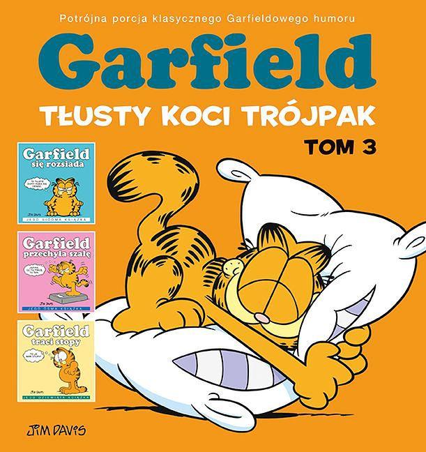 Garfield: Tłusty koci trójpak 3