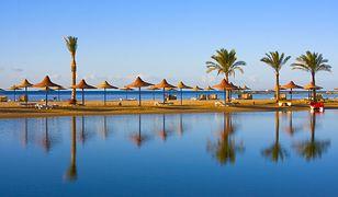 Okazja dnia. Świetny hotel w Egipcie all inclusive nawet 930 zł taniej