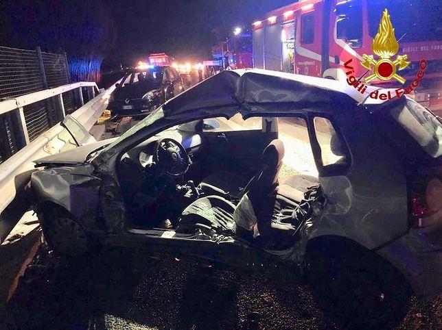 Stado dzików przyczyną tragedii na autostradzie A1 we Włoszech