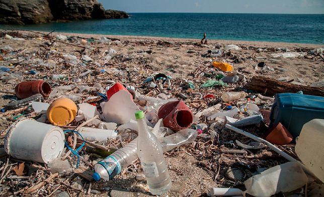 Sztuczna inteligencja pomoże monitorować oceaniczne śmieci