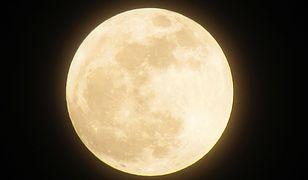 W listopadzie na niebie zobaczymy superksiężyc. Będzie to największa pełnia w tym wieku