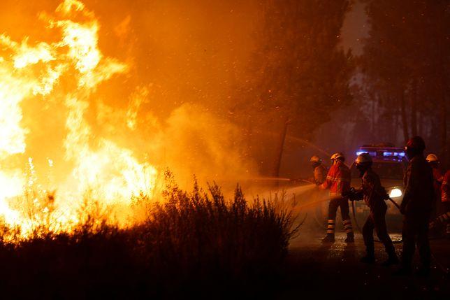 Co najmniej 25 osób zginęło w pożarze szkoły