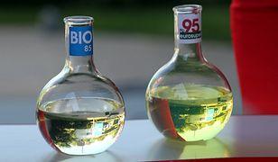 Polskie samochody są za stare na używanie biopaliw