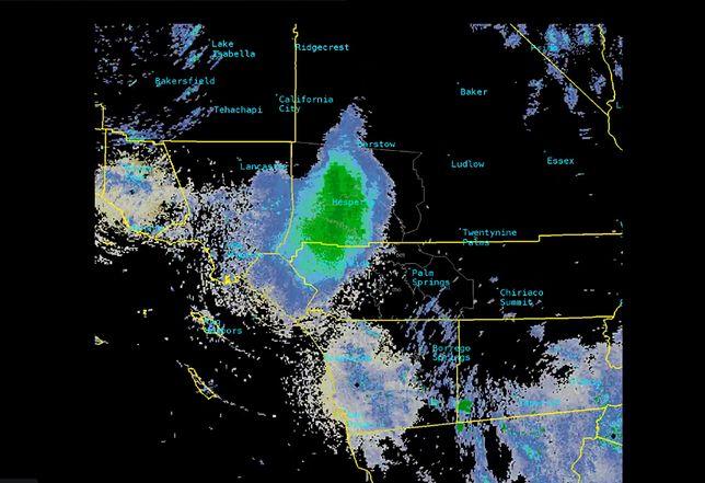 Rój biedronek na radarze wygląda naprawdę imponująco