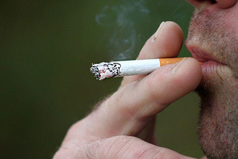 Gigantyczne podwyżki cen papierosów? Palacze złapią się za głowę