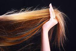 Proteiny, humektanty i emolienty do włosów - co warto o nich wiedzieć?