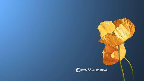 OpenMandriva Lx 3.03 dostępna. Po raz ostatni na 32-bitowe procesory