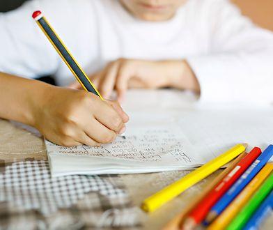 Rzecznik Praw Dziecka o pracy domowej