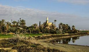 słone jezioro i meczet w Larnace