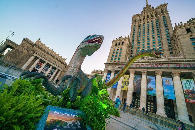 Dinozaury na placu Defilad w Warszawie