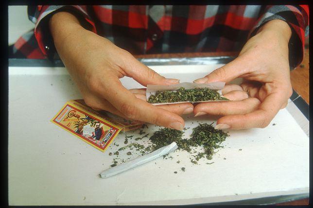 Marihuana w umiarkowanych ilościach nie skutkuje negatywnymi efektami w pracy na następny dzień.