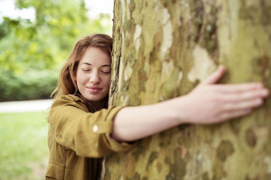 Sylwoterapia, czyli leczenie drzewami