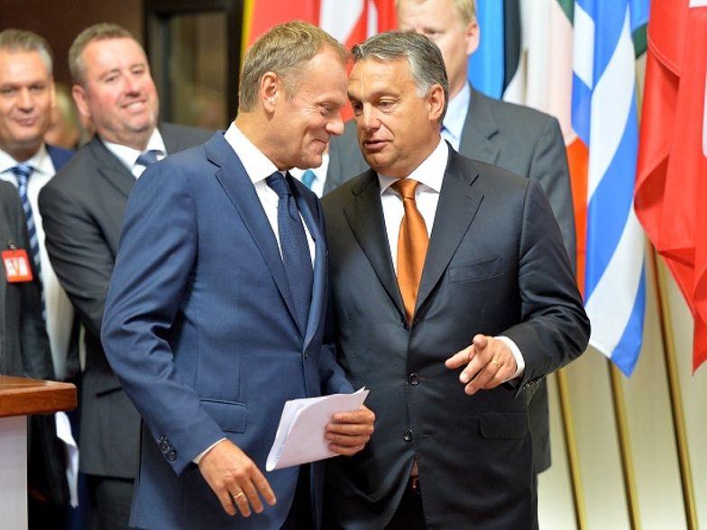 Donald Tusk komentuje seks-aferę. Chodzi o węgierskiego europosła