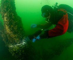 Bomba ekologiczna na Bałtyku. Grozi katastrofą