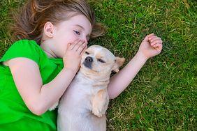 Najbardziej cierpliwe psy dla dzieci