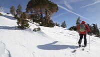 Na narty we włoskie Alpy? Polacy tylko z negatywnym testem i kwarantanna