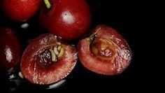 Robaki w owocach. Jak uniknąć niespodzianek w czereśniach?