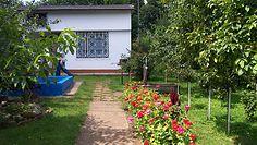 Chętnych na ogródki działkowe nie brakuje. Ekspert tłumaczy, co wpływa na ich ceny