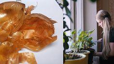 Naturalny nawóz z łupin cebuli. Świetnie odżywi domowe rośliny