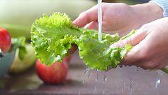 Zwiędnięta sałata. Proste triki na przywrócenie świeżości warzywu