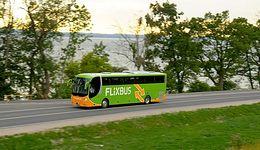 Flixbus jedzie z #moneypomaga. Rozdajemy zniżkowe kupony