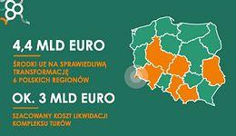 Polska, Niemcy i Czechy. Kopalnia Turów i jej strategiczne